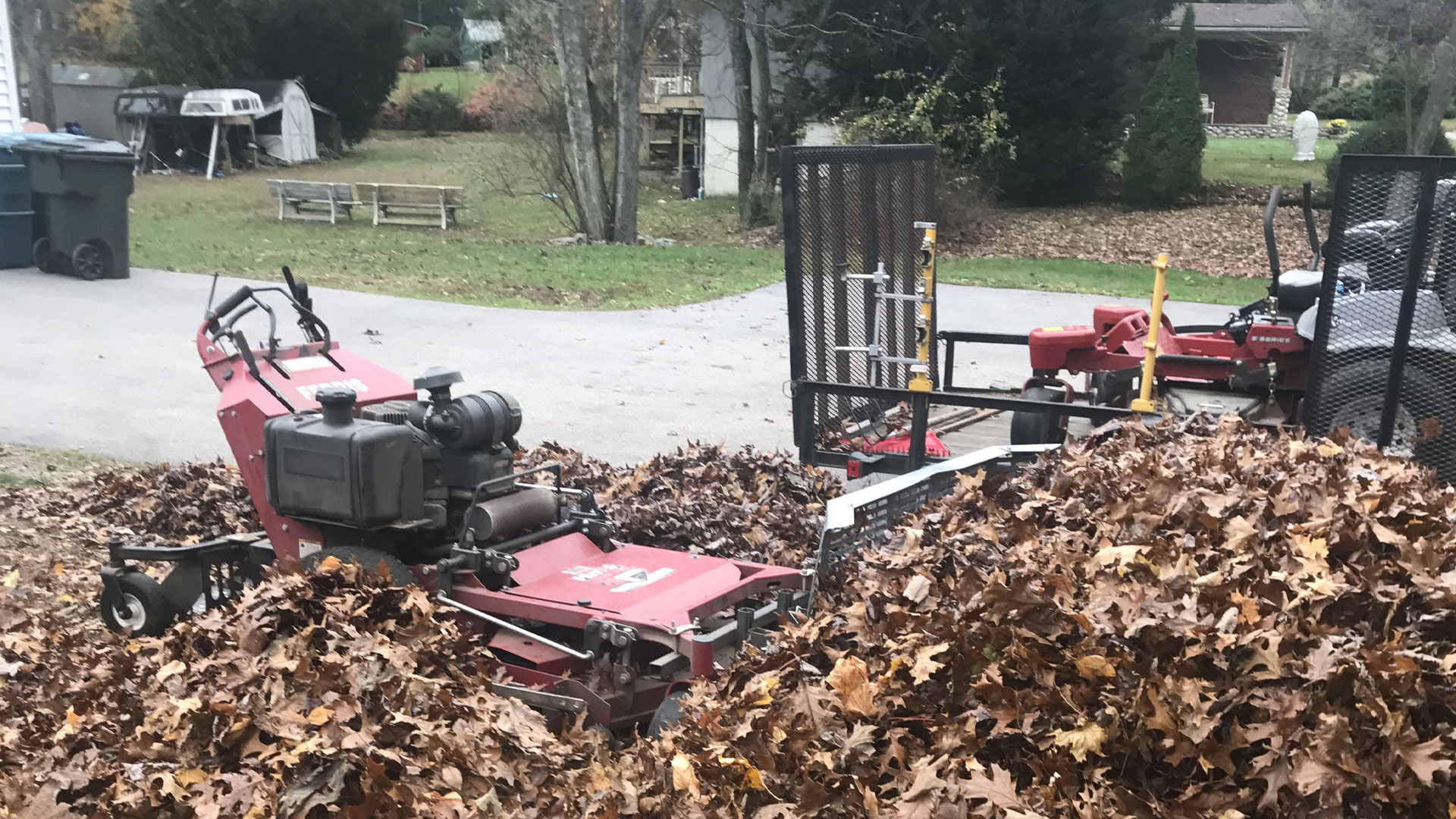 Leaves being collected and removed from a Westerly, RI yard.