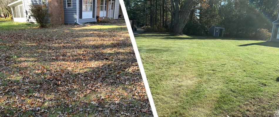 Before and after photo of a leaf cleanup job in Hopkinton, RI.