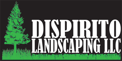 DiSpirito Landscaping LLC logo